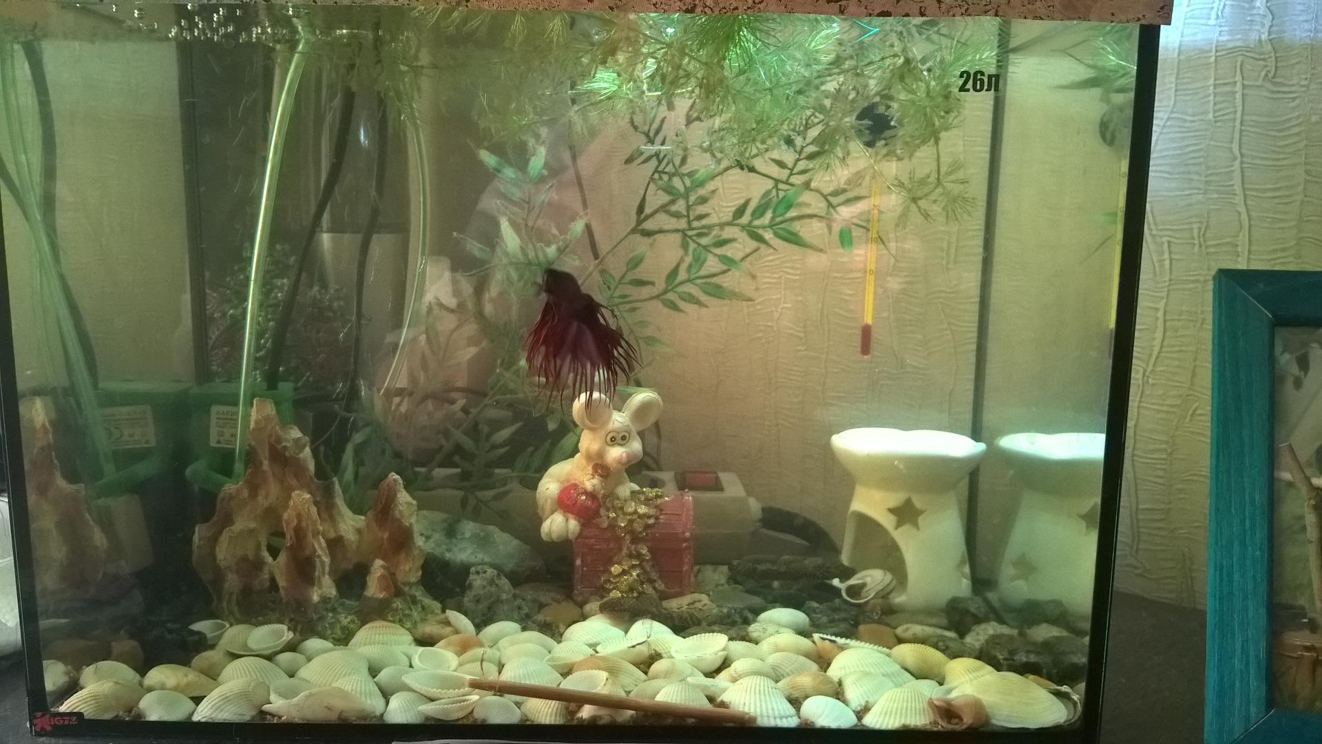 Как сделать воду в аквариуме мягче фото 138