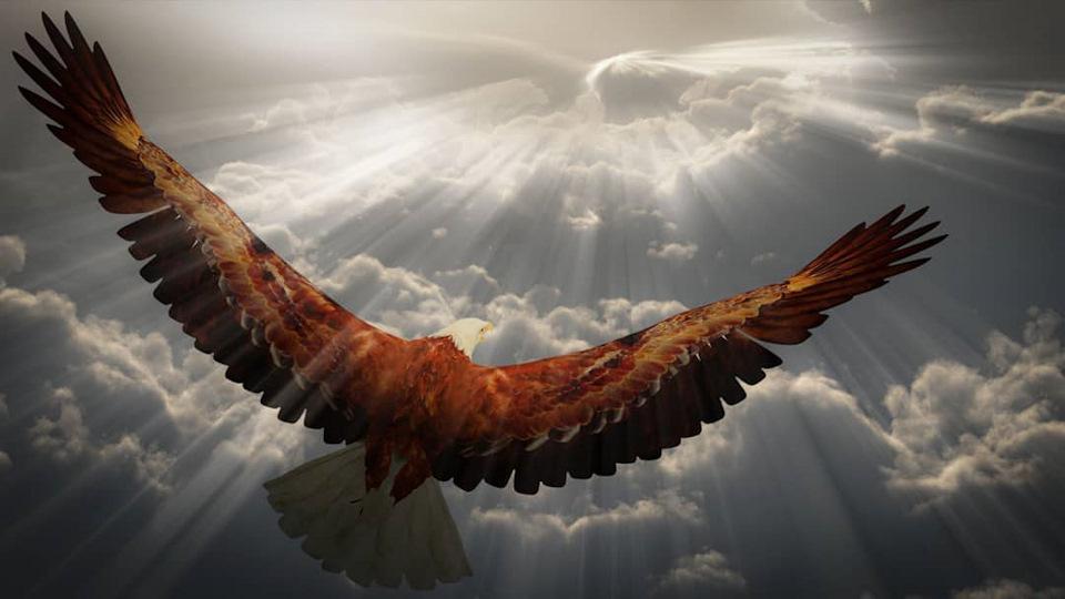 Днем, картинка орла с надписью