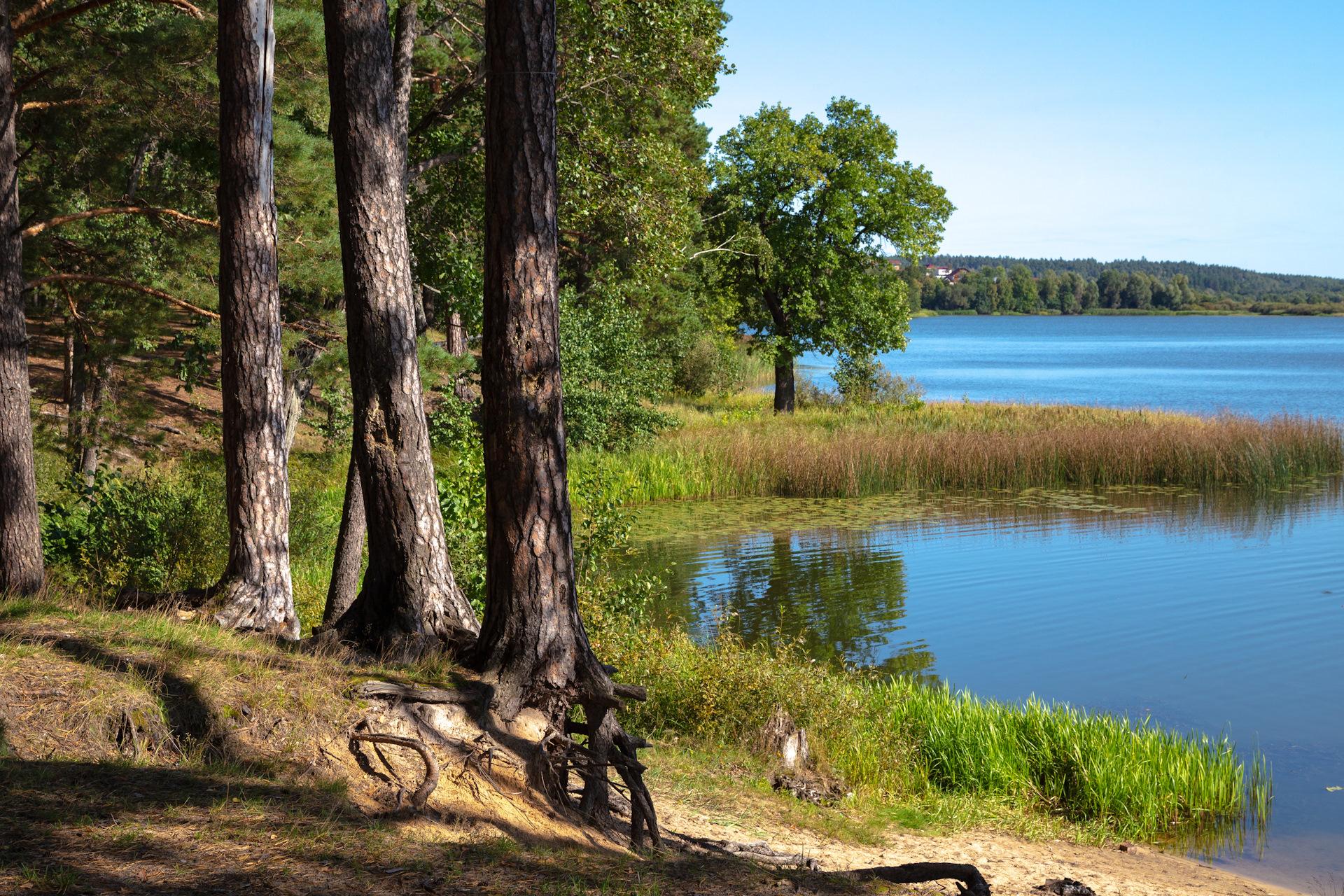 практике, допускается арзамасский район пустынские озера фото памятник железобетона ленинградском