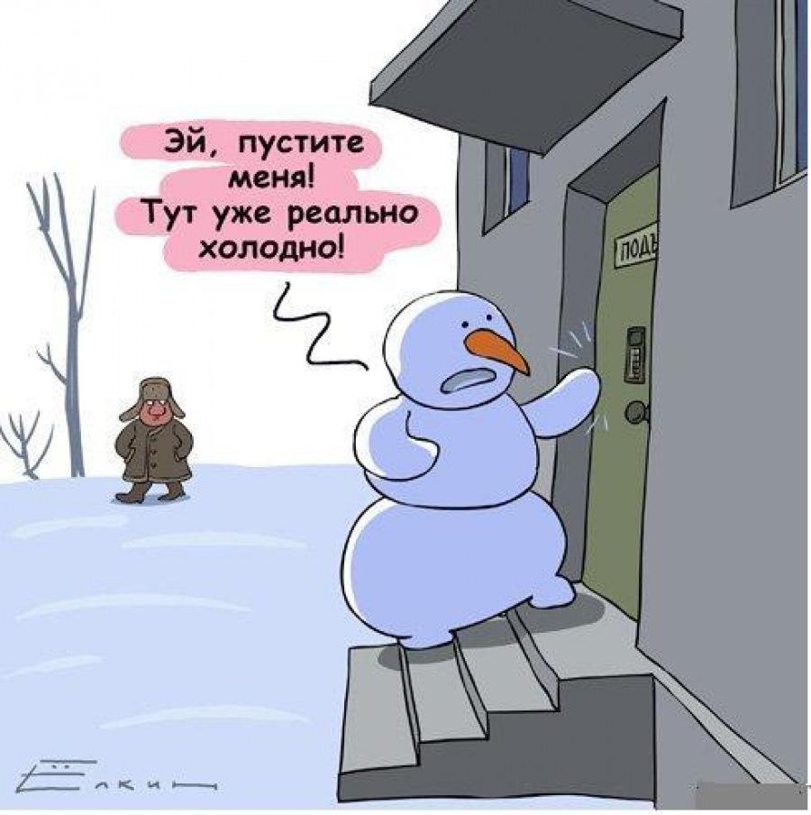 Ну очень холодно смешные картинки
