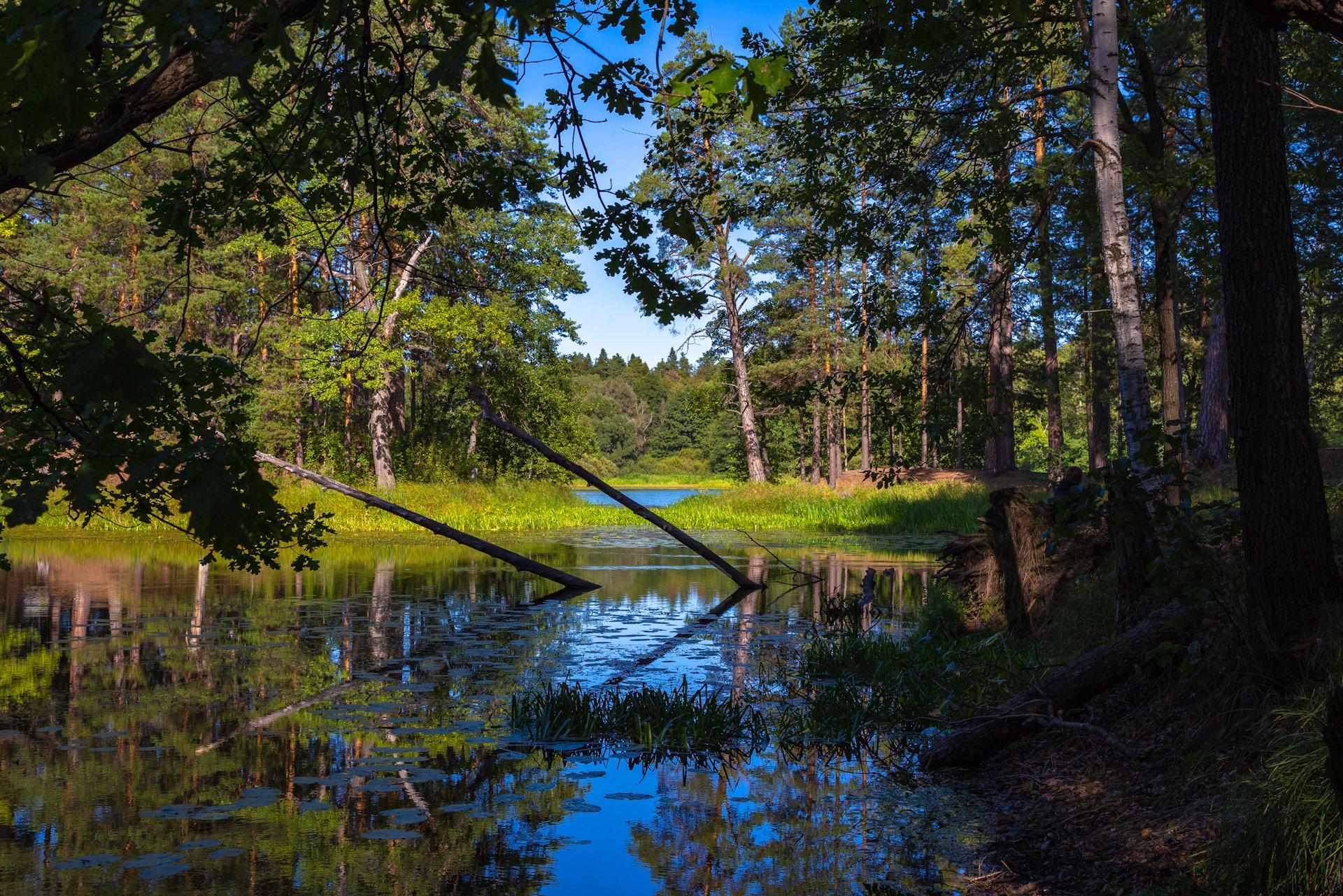Фитнес легенда в озерках фото свободные