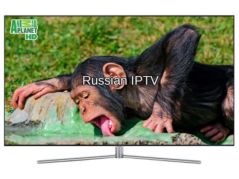 iptv russian channels 2019 | watch iptv ru online Russian TV best