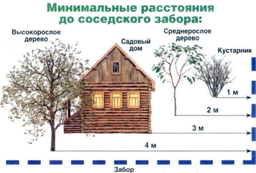строительство дома сколько от соседей