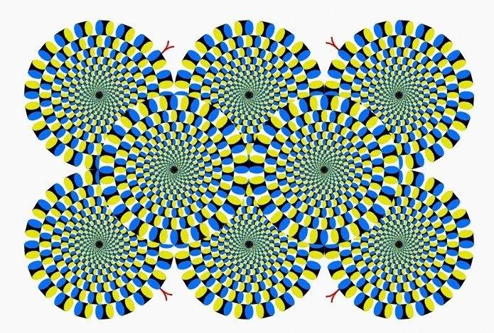 последнем картинка иллюзия змеи ёжик ебантяй танцует