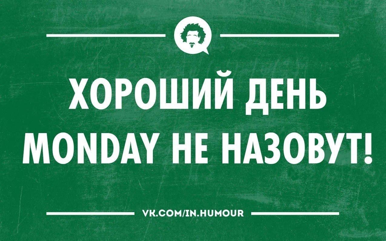 Картинка про понедельник юмор