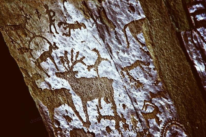 Петроглифы алтая картинки