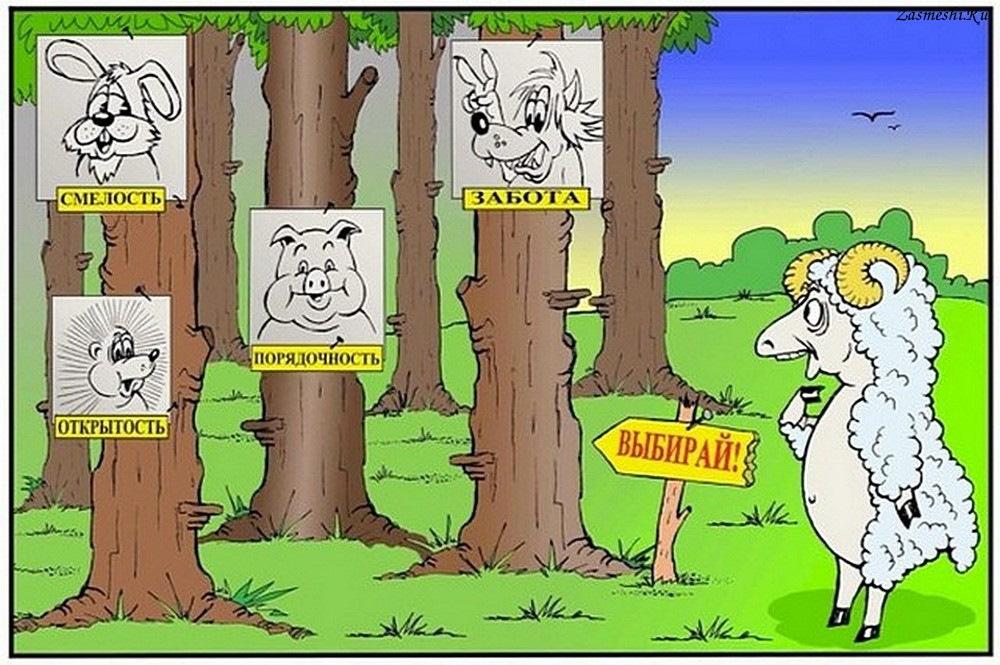 Днем, выборы в смешных картинках