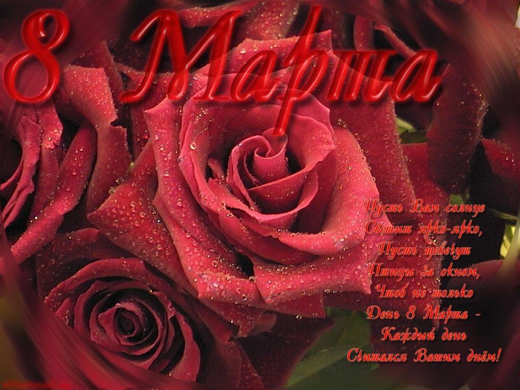 Открытка мая, открытка роза с 8 марта