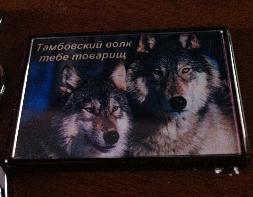 делается целью приколы с тамбовским волком фото кожевникова