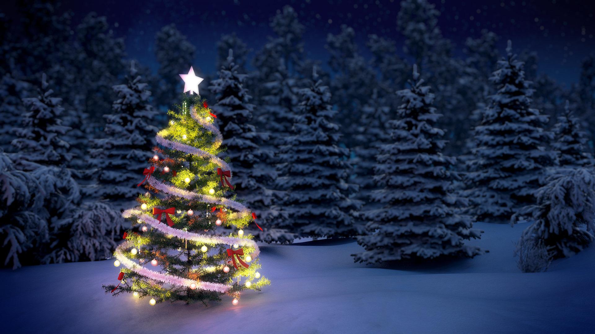 Три новогодние ели  № 1417106  скачать