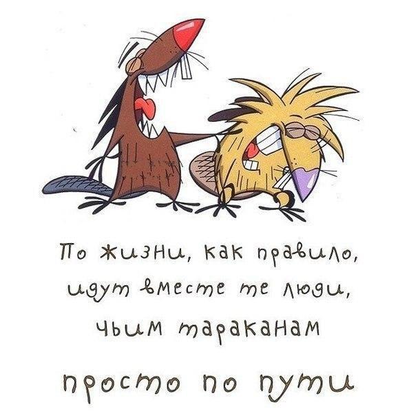 Картинки с цитатами смешные про дружбу, февраля для телефона