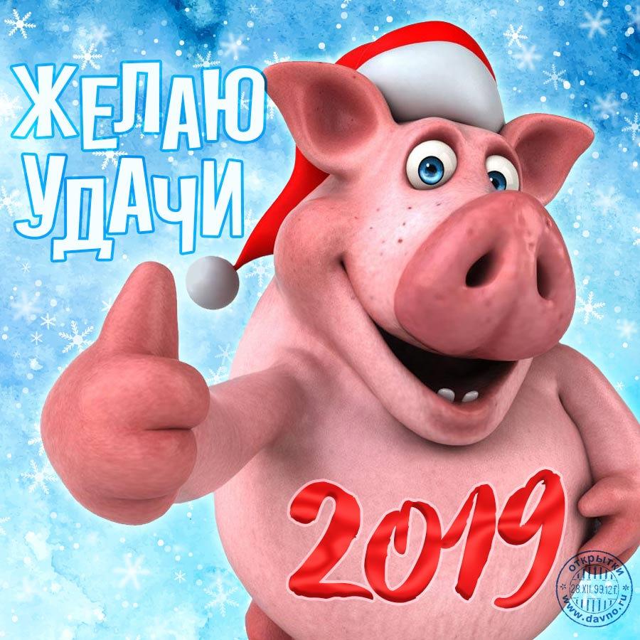Поздравительные открытки с наступающим новым 2019