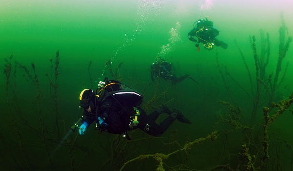 Kenigtime блог озеро янтарное дайвинг
