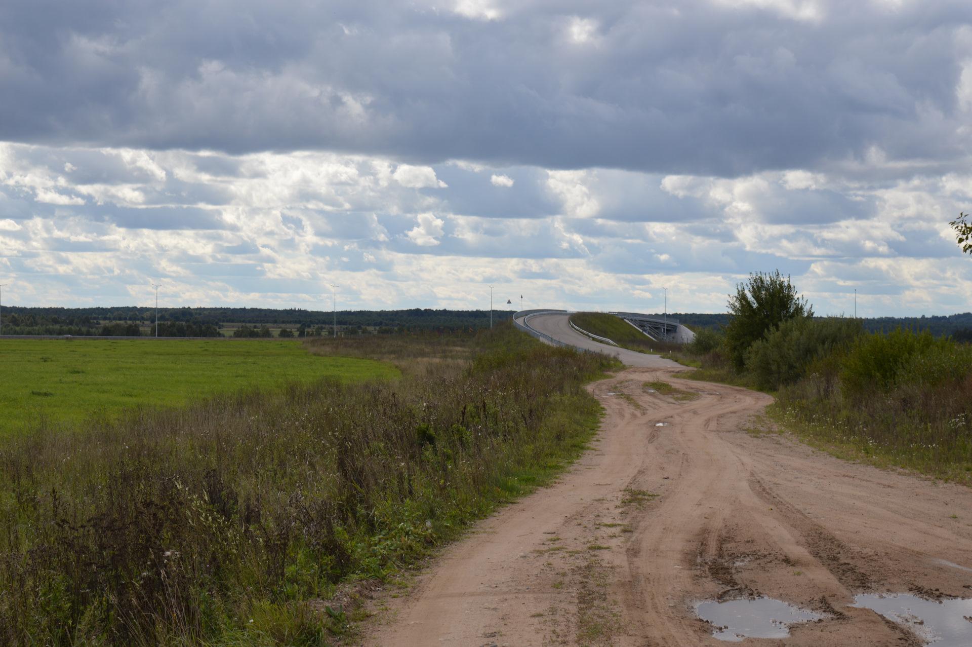 бронзовки фото терешкино торжокского р на красноярского края жалуются