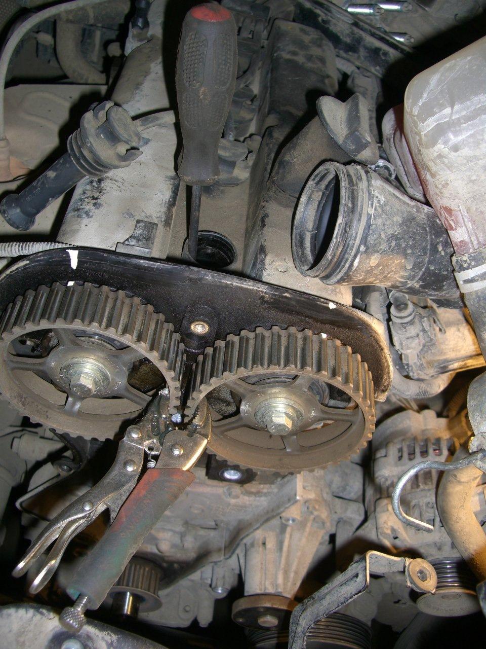 Замена ремня грм форд фьюжен 1.6 своими руками фото