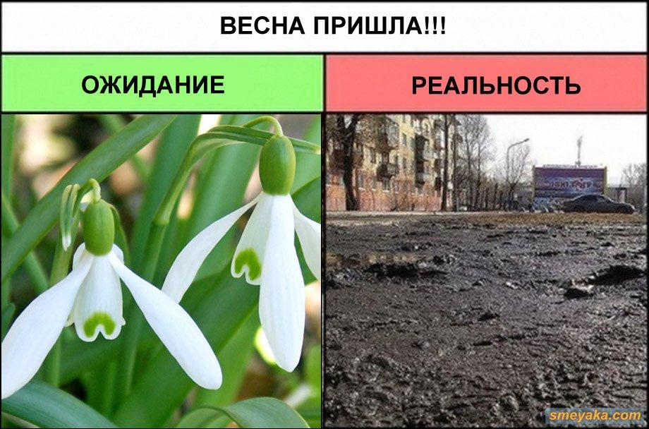 Картинки приколы весна пришла, цитаты про жизнь