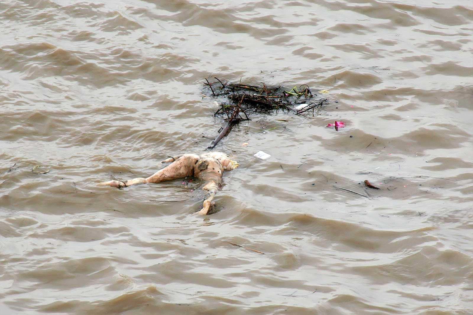ganges river dead bodies - HD 1600×1067