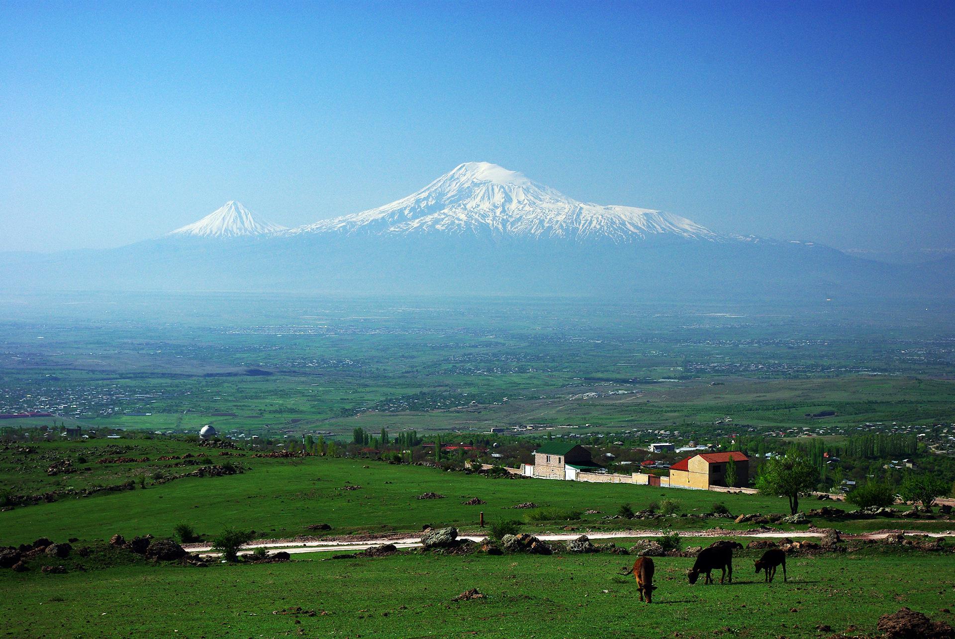 картинка золотистого фото про армению повстанцы
