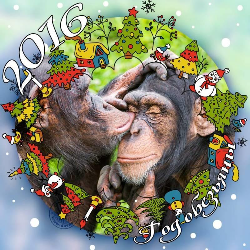Открытки, прикольный открытки с новым 2015 годом