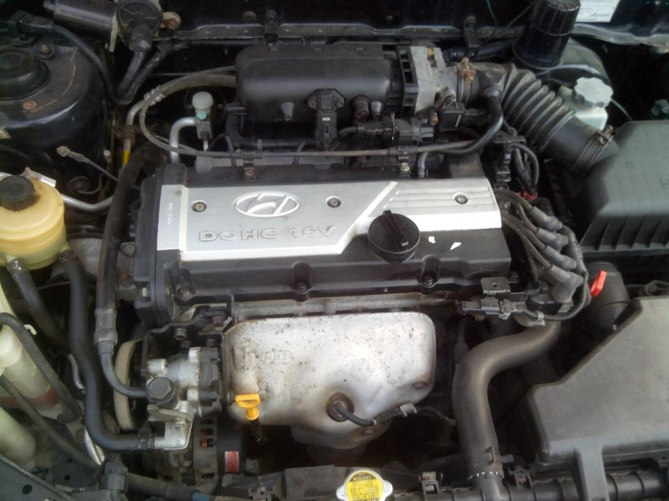 Замена прокладки клапанной крышки и сальников свечных колодцев - бортжурнал Hyundai Accent чОрный Плащ 2005 года на DRIVE2