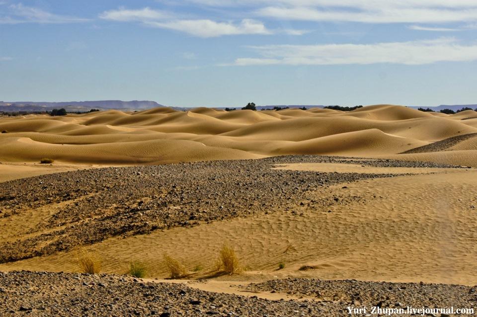 еще картинки природной зоны пустыни шапка-капюшон