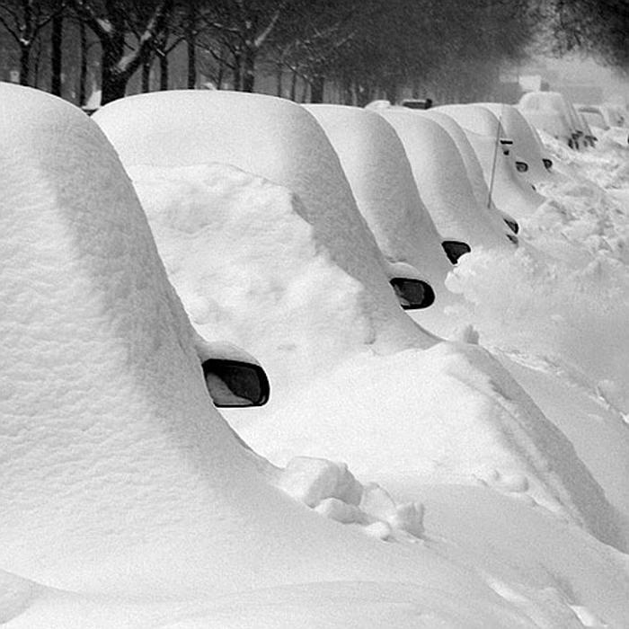 Картинку, картинки смешные много снега