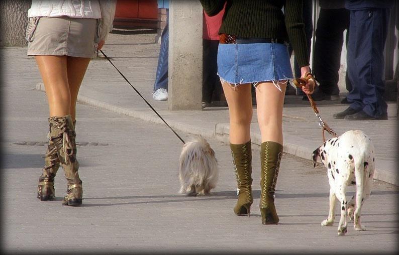 Женщина и собака.