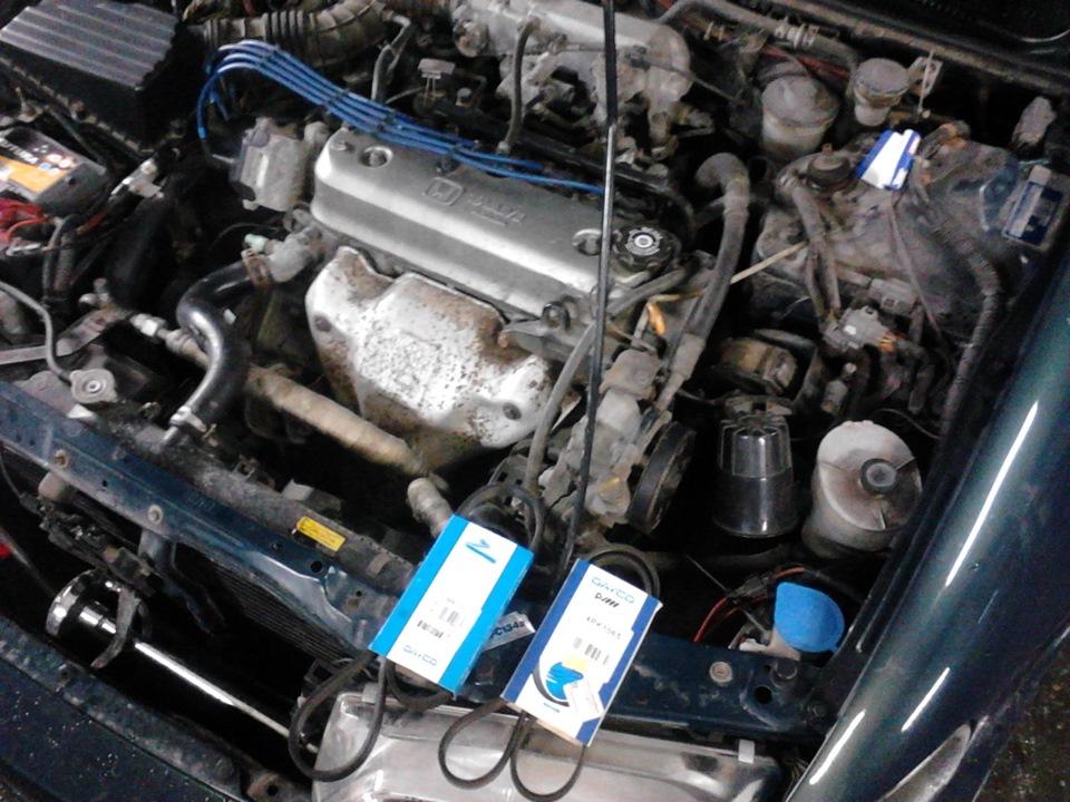 Honda Accord хамелион