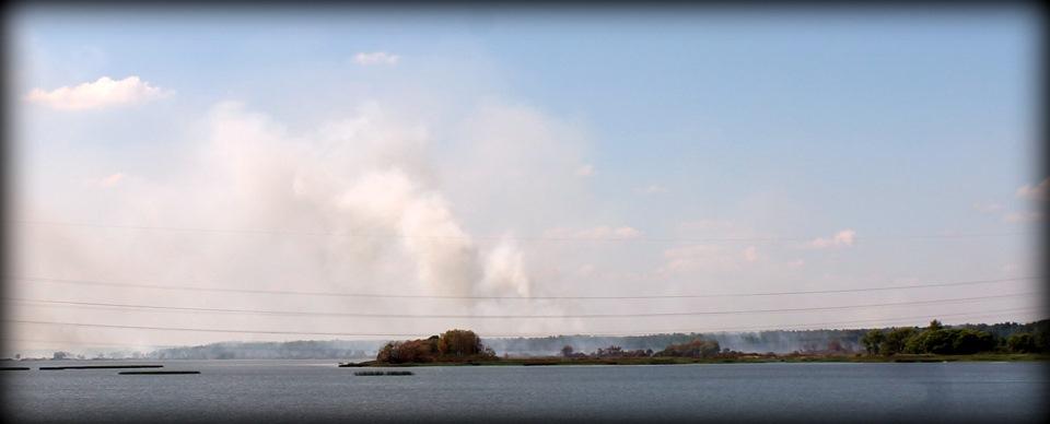 Пожары в Тверской области летом 2014 года.