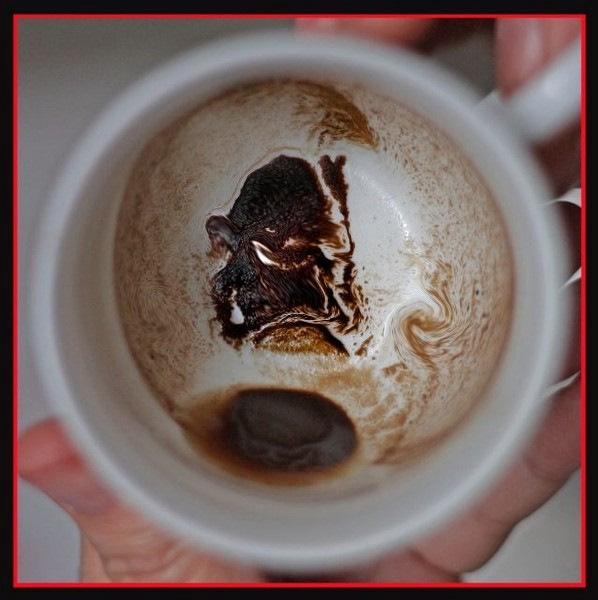 Гадание на кофейной гуще сумка