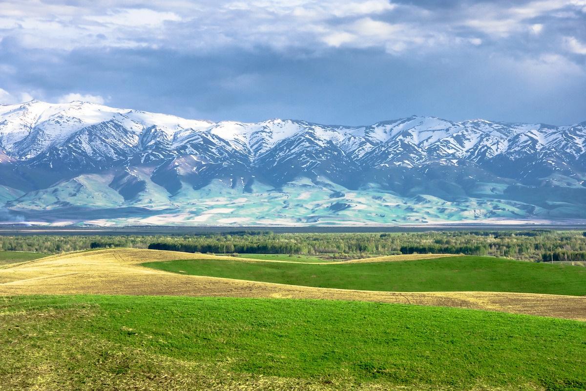 Как купить землю на теретории казахстана под казино игровые аппараты пинбол