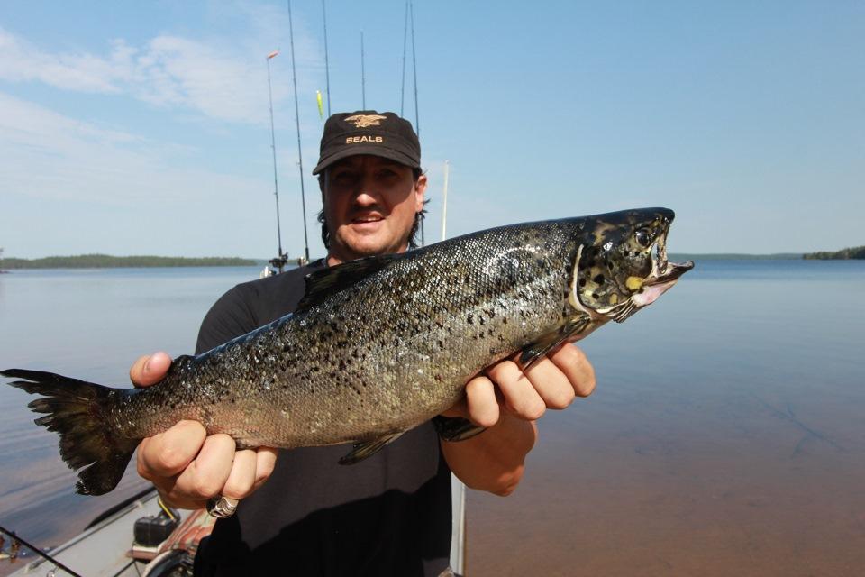 Рыбалка на лосося карелия