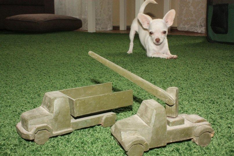 Прибитые к полу игрушки