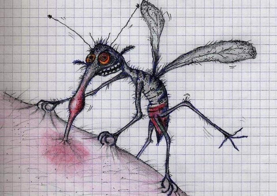 Рисунки смешного комара