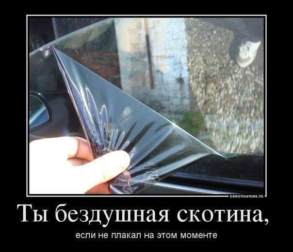 Открытка, как стекло смешные картинки