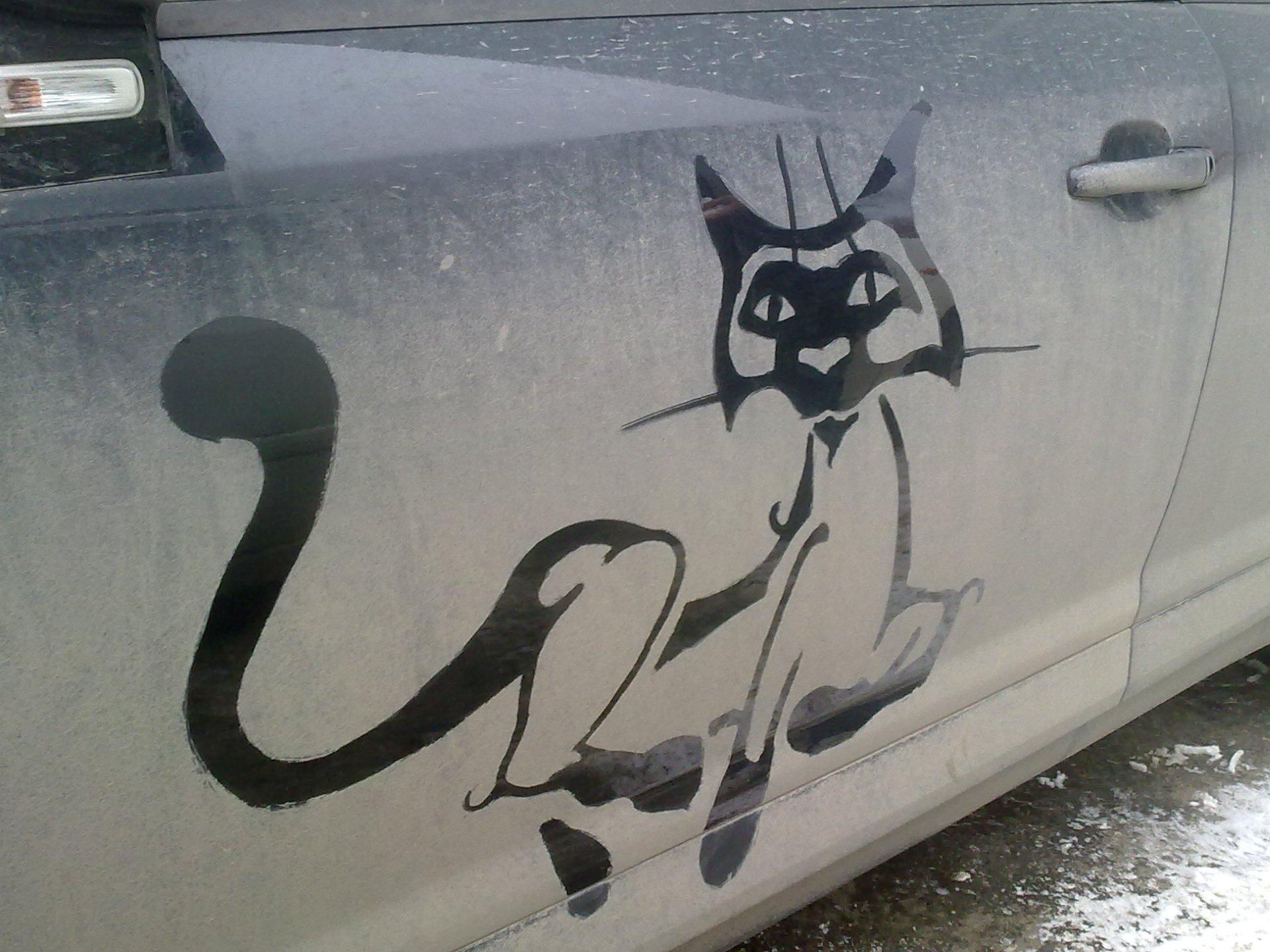 Рисунок на грязной машине