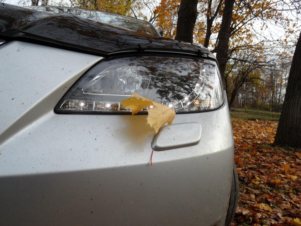 Картинки шашлыки на природе осенью