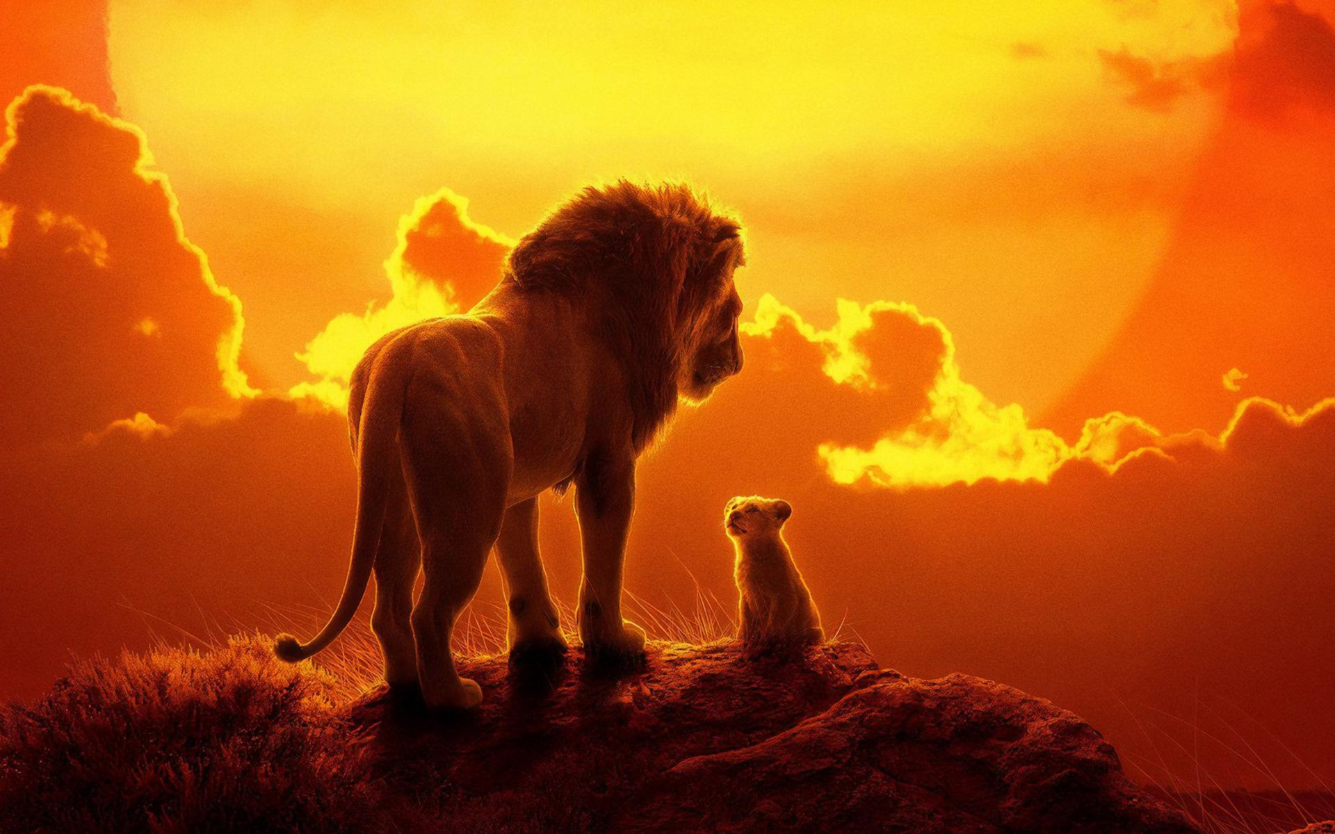 Картинки король лев 2019, анимешные картинки