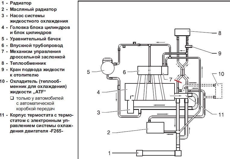 Схема охлаждение двигателя шкода октавия bfq