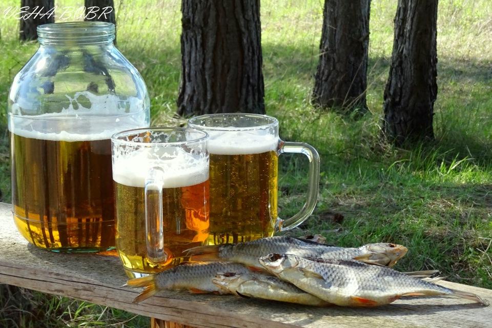 следует манипуляции картинки стеклянные банки с пивом всех