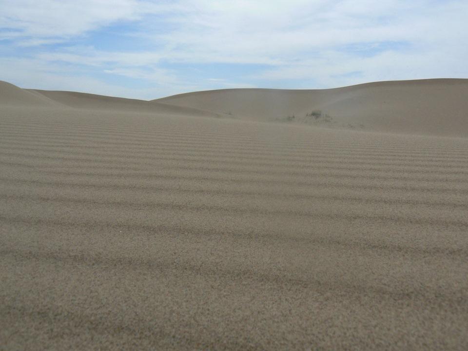 песчаные гряды картинка простым паштетом заключается