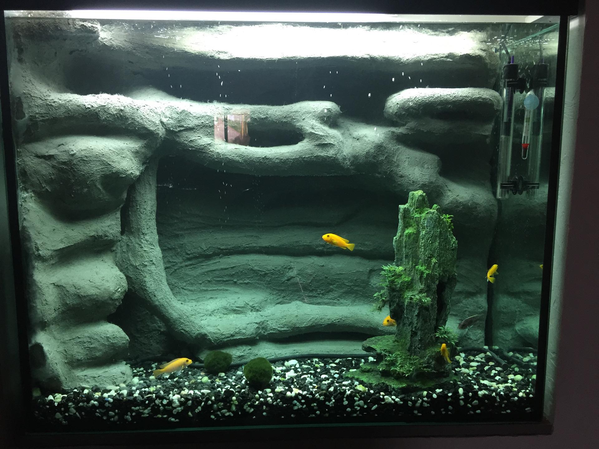 фон из ткани для аквариума лучше