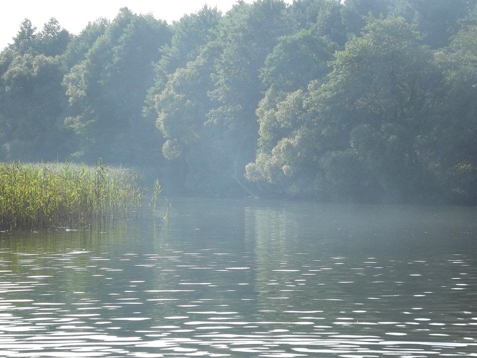 Картинки природа 960 854