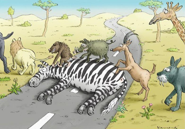 одесского смешные рисунки про африку нами электронные