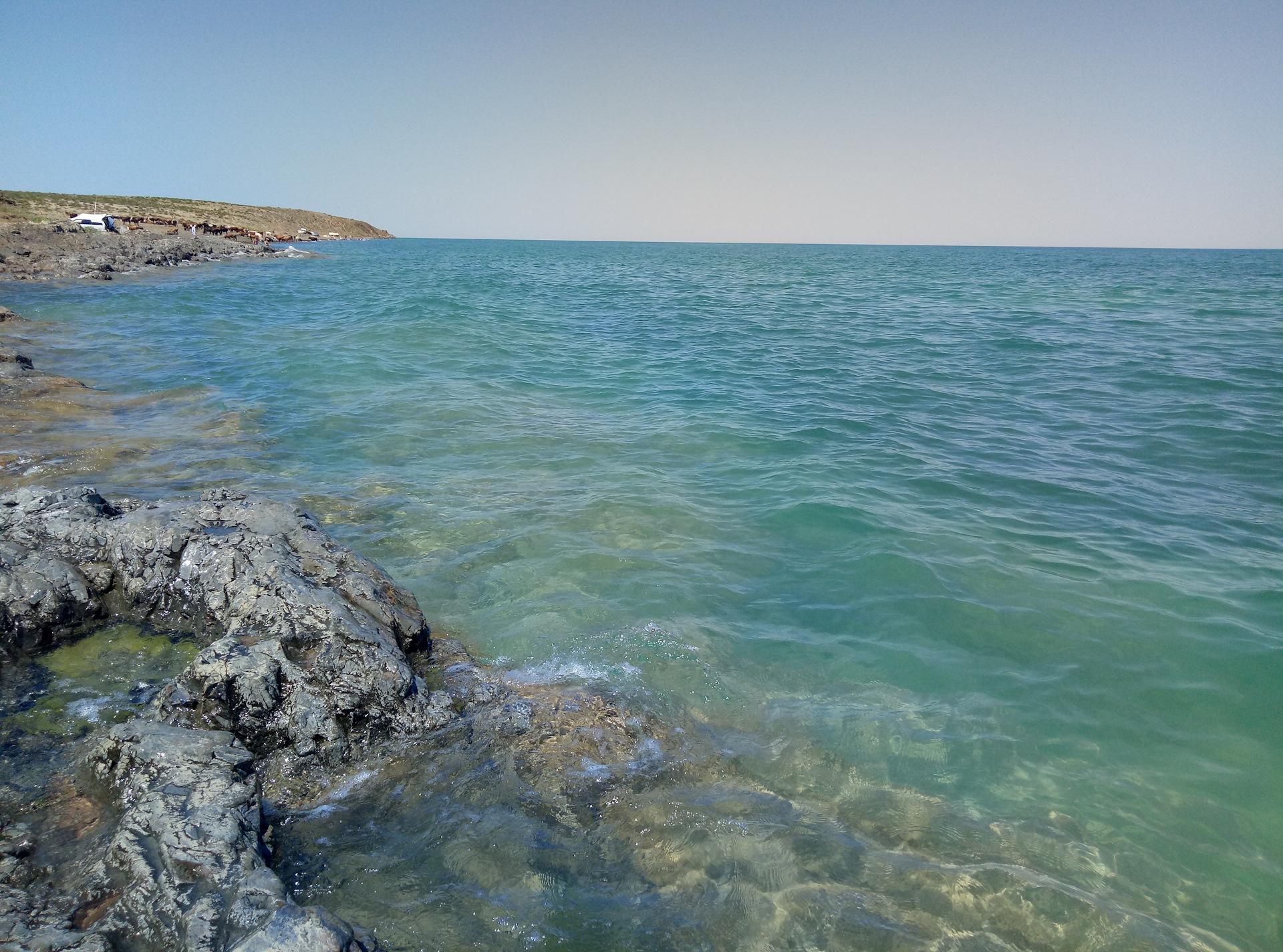 высококлассные озеро балхаш казахстан фото македонии двое