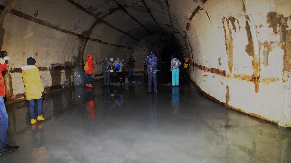 смотреть фото убежище подводных лодок в павловске удивляет, что