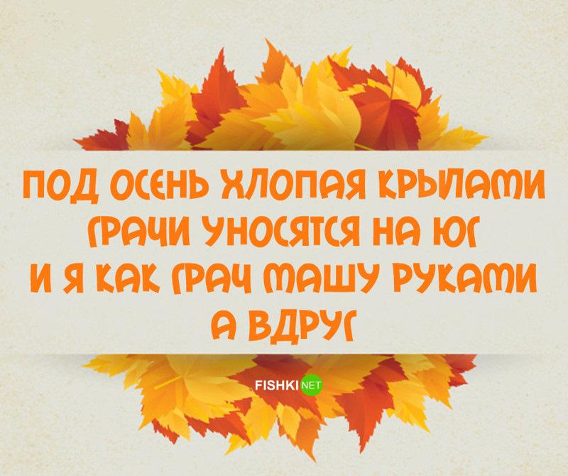 картинка с приколами про осень как организовать
