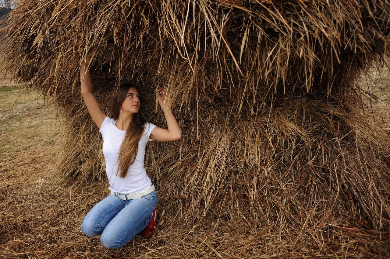 Где взять сено для фотосессии лечащая