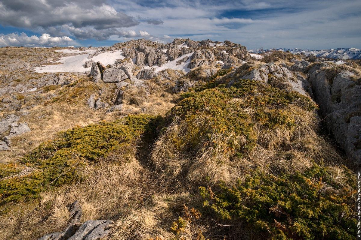 трубчатые фото каменного моря в лагонаки пера автора вышли