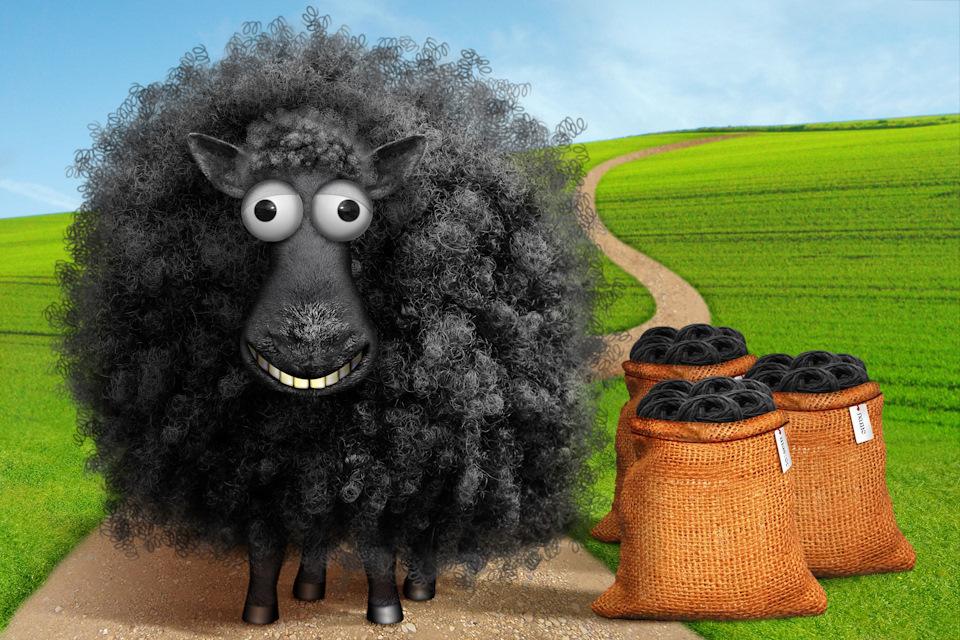 Здоровье, картинки с овцами смешные